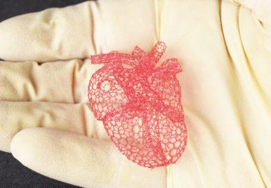 Zucchero come supporto alla stampa 3D di organi umani